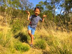 Happy Boy, Sherbrook Valley, Brocton, England