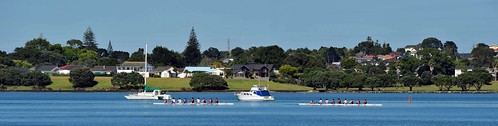 Boating on the Tamaki River