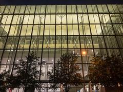 Austin Convention Center windows