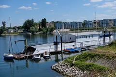 Mannheim_Hafen