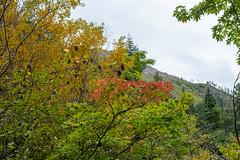 Cascades_East-2919