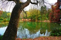 Emerald Lake, Puffing Billy