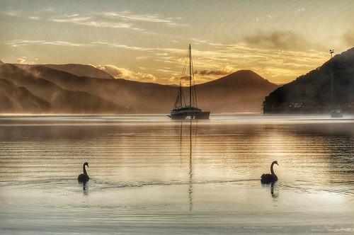 2 Swans.