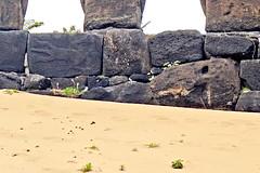Chile-03236 - Lizardman & Old Moai