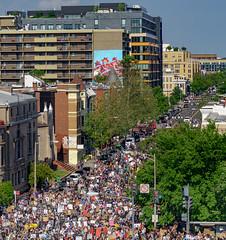 2020.06.06 Protesting the Murder of George Floyd, Washington, DC USA 158 20211