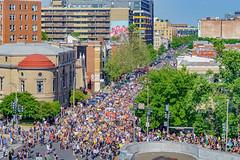 2020.06.06 Protesting the Murder of George Floyd, Washington, DC USA 158 20207