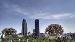 MEXICO CITY REFORMA AVENUE FROM CHAPULTEPEC CASTLE