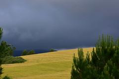 Tempesta. les Llambardes, Torrelles de Foix.