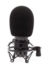 Black Studio condenser Microphone with sponge wind shield