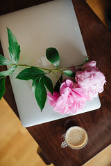 Macbook, flowers and coffee from above.
