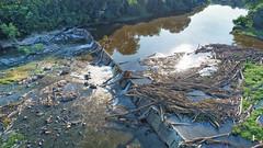 Lockville Dam, Moncure NC, 06-07-2020 (view 2)