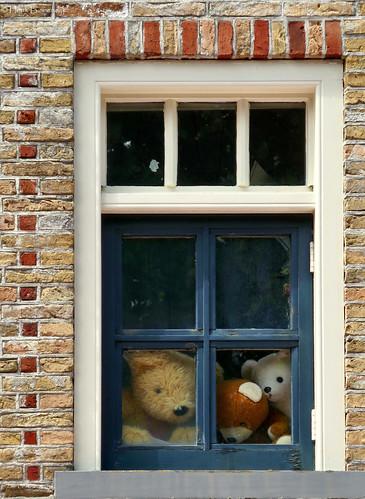 Terschelling: Midsland, bears in a window