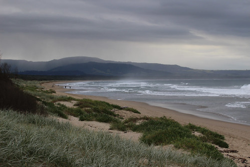 Seven mile beach, Shoalhaven Heads