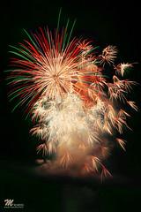 全国花火競技大会 (秋田県大仙市)/Japan Firework Competition Festival260