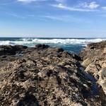 Cape Perpetua Marine Reserve & Protected Areas