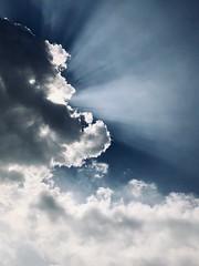 在漫漫雲海中的鬍子燈塔