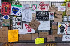 2020.06.09 Black Lives Matter Plaza, Washington, DC USA  161 36032