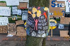 2020.06.09 Black Lives Matter Plaza, Washington, DC USA  161 36037