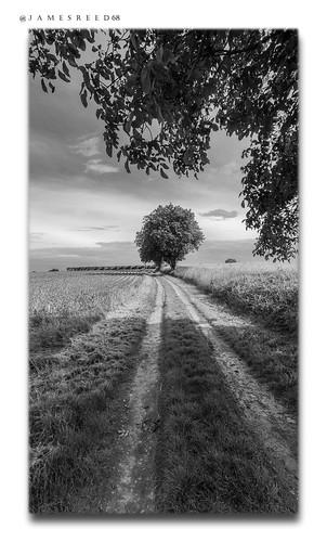 Chemin, doux chemin...