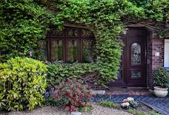 Leafy Cottage