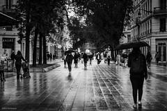 Street Photography 2020