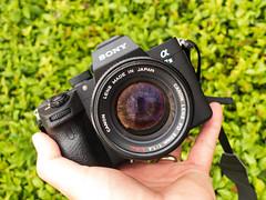 A7iii + 50mm f/1.4