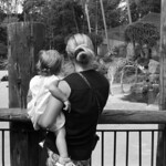 An Ultrafine Day at the Zoo  (Ultrafine eXtreme 100)