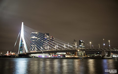 Rotterdam / Evening Walk 2020