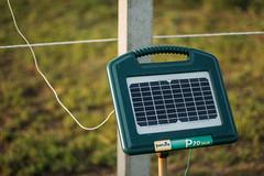 Weidezaun-Gerät mit integriertem Solarmodul. Patura P70 Solar