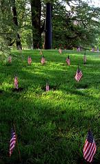 "Cincinnati - Spring Grove Cemetery & Arboretum ""Memorial Day At Ceder Lake Canon"""