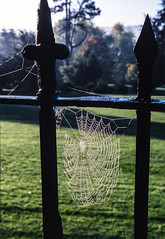 Slide copies, 5th November 2001, Bath, Somerset