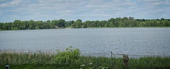 View of the lake | June 9, 2020 | Bornhöved - Schleswig-Holstein - Germany