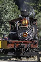 Roaring Camp engine Head On