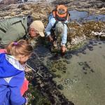 Marine Reserve BioBlitz 7/6/2019
