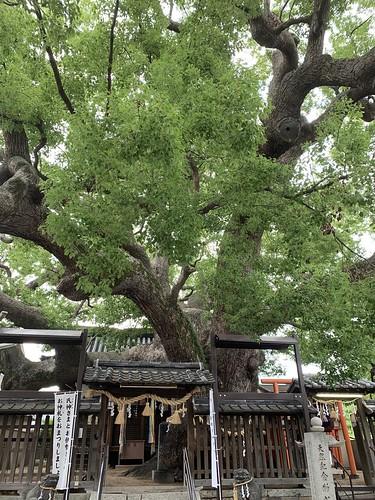 三ツ島神社