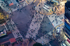 Shibuya Scramble Square: Shibuya Crossing