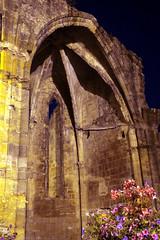 FR11 5903 L'abbaye bénédictine Notre-Dame d'Alet (Xe siècle). Alet-les-Bains, Aude - Photo of La Digne-d'Amont
