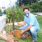 Ação de plantio no Vale do Canela - Junho/2020