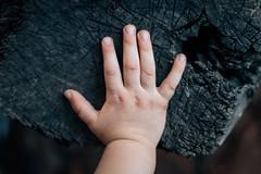 Hand eines Kleinkindes berührt einen rauen Hackblock. Symbolik für Unschuld in einer finsteren Welt