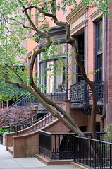 Mrs. Dalloway's House (1846): West 10th Street, Greenwich Village, New York