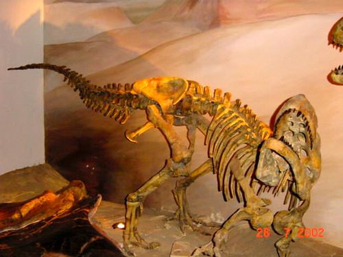 360 Tre esquelets 06