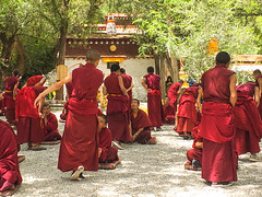 The monks - Sera  Monastery བོད་པ་