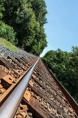 Head on the Rail. LL_15