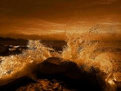 Olas / Waves