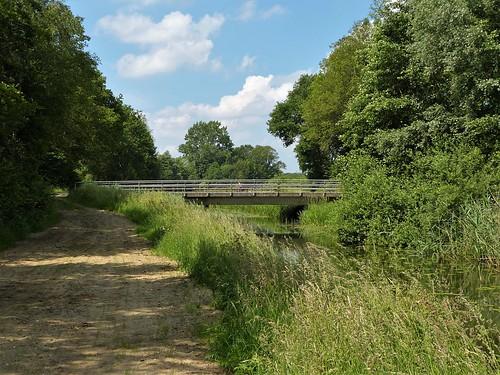 A walk along the stream Beurzerbeek