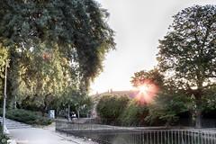 014415 - Alcalá de Henares