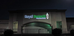 Royal Emerald Pharmaceuticals (5643)