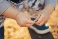 Kleinkind knetet ein winziges Stückchen Erde zwischen den Fingern