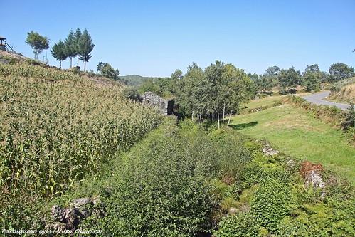 Rio Cabrum - Gralheira - Portugal 🇵🇹