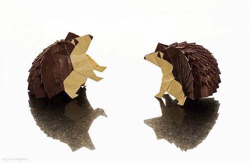 Origami Hedgehog (Yudai Imai)